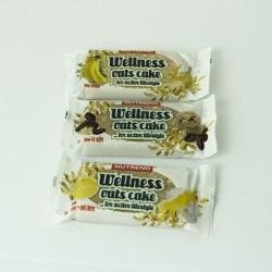 Wellness Oats Cake